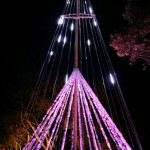 写真 2014-12-19 22 08 36